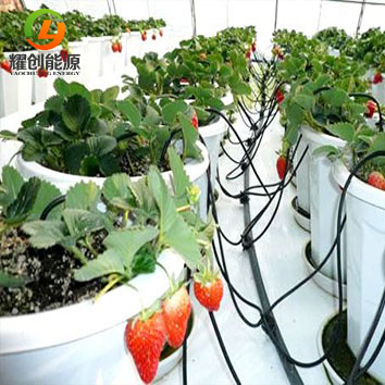 光伏提灌系统增加农作物的产量